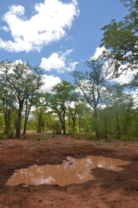Clay pan systems, Zimbabwe